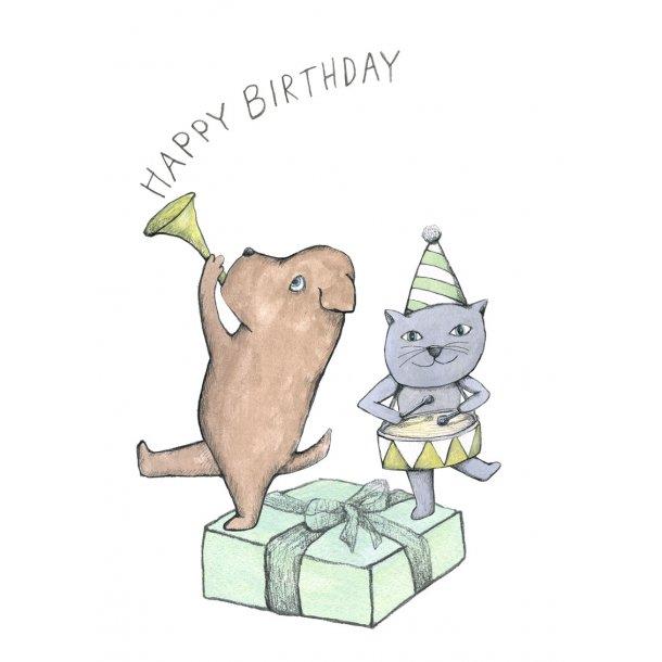 Cat and dog, birthday